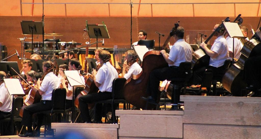 blog seekingone chicago symphony in the park