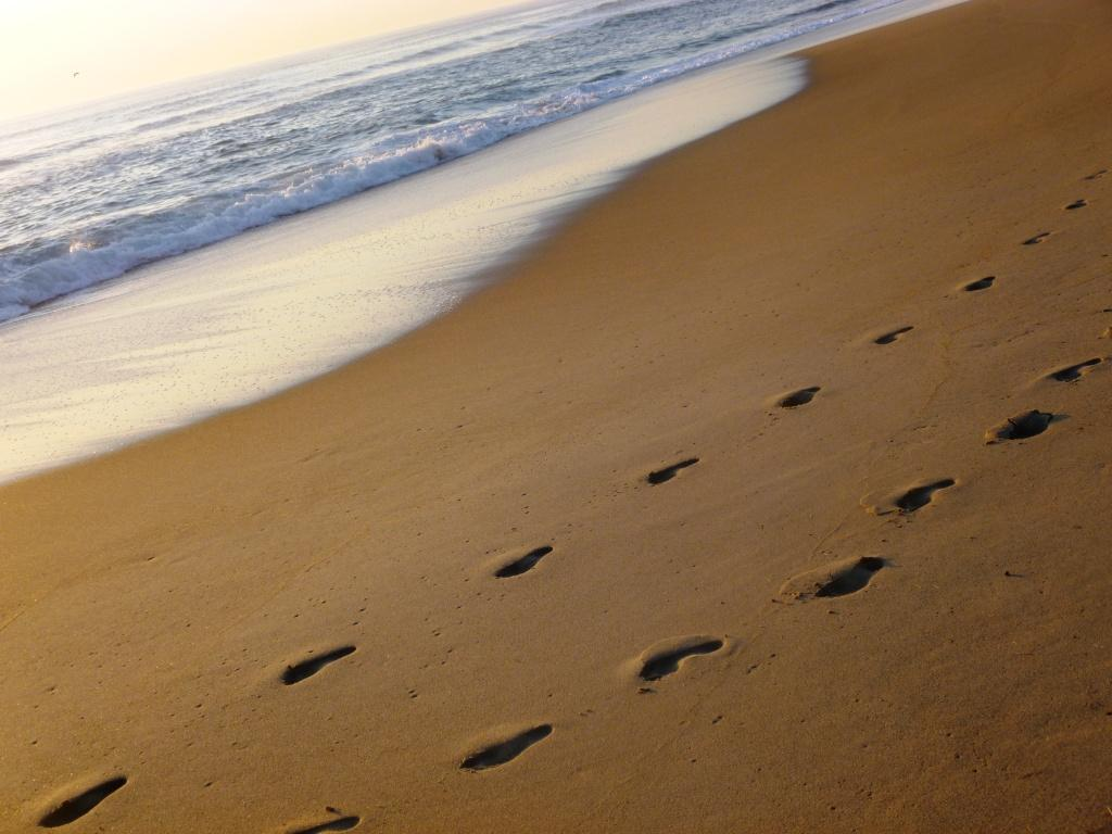 footprints 2 sets