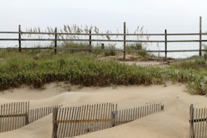 blog fence and dunes