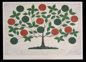Tree of Life - Hannah Cohoon (Public Domain)